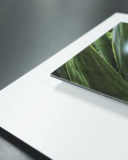 Stampa - Alluminio Bianco