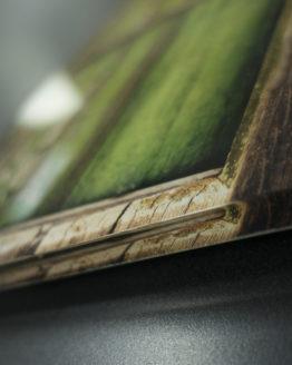 Stampa - Plexiglass 0,5 cm