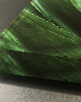 Stampa – Plexiglass 2 cm